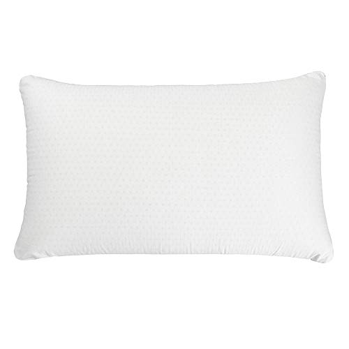 Simmons Beautyrest Beautyrest Latex Foam Pillow with Cover - 100% Talalay Latex Pillows - Queen