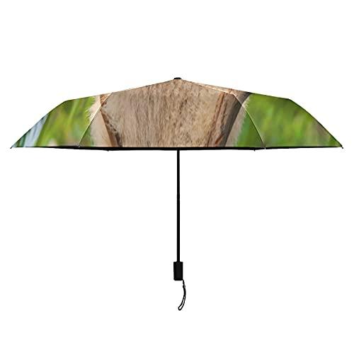 Paraguas infantil lindo oso panda escalada en el árbol niños paraguas niñas portátil ligero a prueba de viento paraguas para niños sol lluvia perfecta paraguas plegable para mujeres