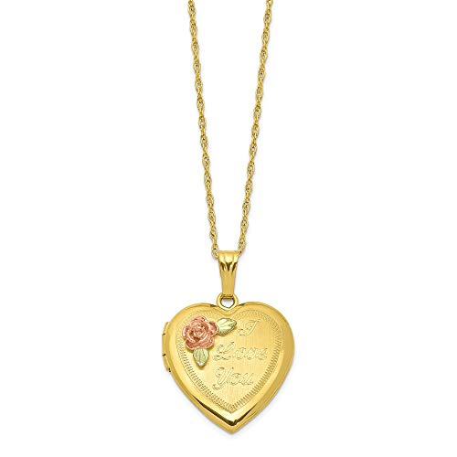 14k Yellow Gold-Filled 12k Gold Accents Black Hills Locket Necklace 18inch for Women