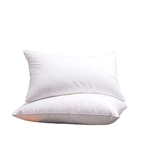 N /A 45 x 75 cm almohada almohada almohada almohada almohada almohada almohada almohada individual doble almohada almohada almohada