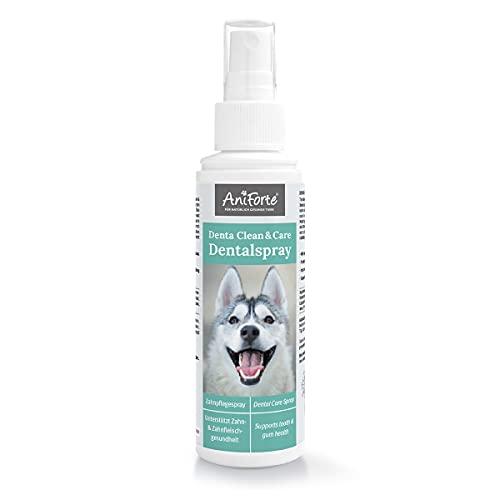AniForte Denta Clean & Care Dentalspray für Hunde Zahnstein 100ml – Natürliche Pflanzenextrakte & Calcium unterstützen Zahngesundheit, Mundgeruch Spray reduziert Plaque, optimale Hunde Zahnpflege