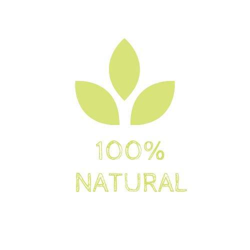 Pet Natura Suplemento Vitamínico PELOVIT Plus - Comprimidos - vitaminas Grupo B y biotina -Perros y Gatos