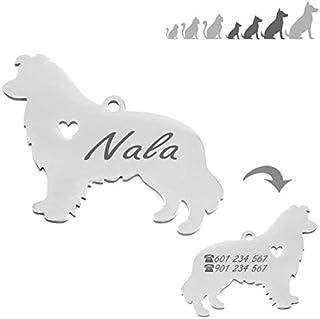 Genuino Oro Plateado Perro Gato Mascota Identificación Etiquetas de nombre-Etiqueta de identificación grabada personalizada