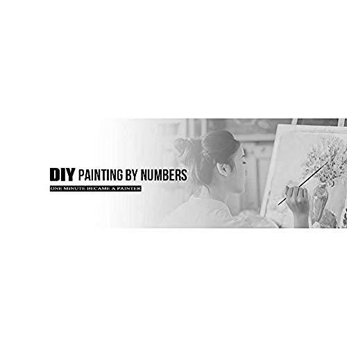 Ölgemälde Paint By Numbers Kits Für Paint Color Nach Den Zahlen Auf Der Leinwand 16X20 Zoll - Zeichnen Mit Pinsel Weihnachtsdekor (Ohne Rahmen) (Panda Mutter Und Kind) -Rückansicht Des Ballerina Girl