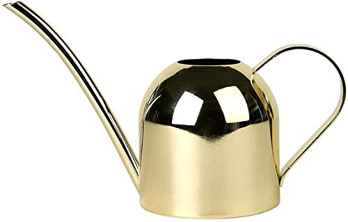 DYB Small watering can for indoor plants Stainless Steel Watering Can Kettle Garden Home Bottle Plants Flower Sprinker Pot Tools Gold