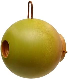 Byer of Maine Mango Tree Globe