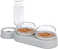 Katzennapf-Set 15° Neigbar Doppelter Futternapf für Nass- Trockenfutter, mit Automatischer Wasserflasche, für Kleine und...