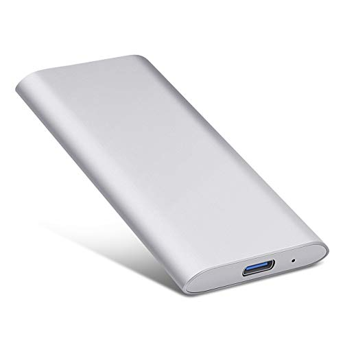 Externe Festplatte 1tb, Type C USB 3.1 Tragbare Festplatte für PC, Mac, Desktop, Laptop, MacBook, Chromebook (1tb, Silber)