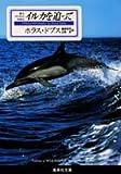 イルカを追って 野生イルカとの交流記 (集英社文庫)