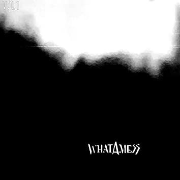 Whatamess, Vol. 1