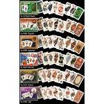 Shamrock Irish Playing Cards 2 Poker x 55