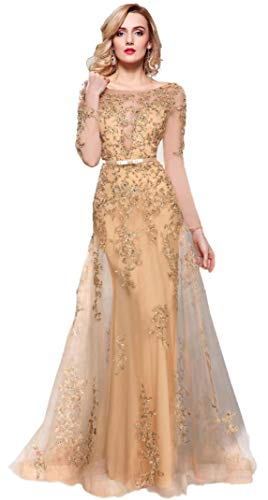 Meier Women's Illusion Long Sleeve Embroidery Tulle Gown Gold Size 8