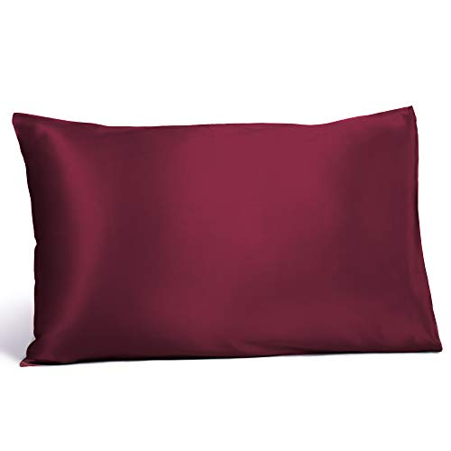 Fishers Finery 25mm 100% Pure Mulberry Silk Pillowcase, Good Housekeeping Winner (Gray, Queen)