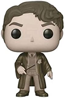 Funko Pop Movies: Harry Potter - Sepia Tom Riddle Collectible Figure, Multicolor