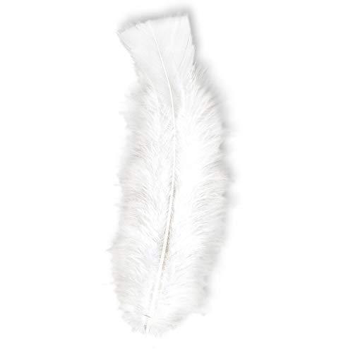 Widmann 50 Plumes droites blanches 15 cm