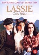 STUDIO CANAL - LASSIE COME HOME (1 DVD)