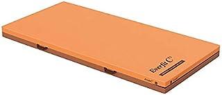 パラマウントベッド社製ベッド用 エバーフィットマットレス清拭タイプ レギュラー (KE-611SQ) (91cm幅レギュラー)