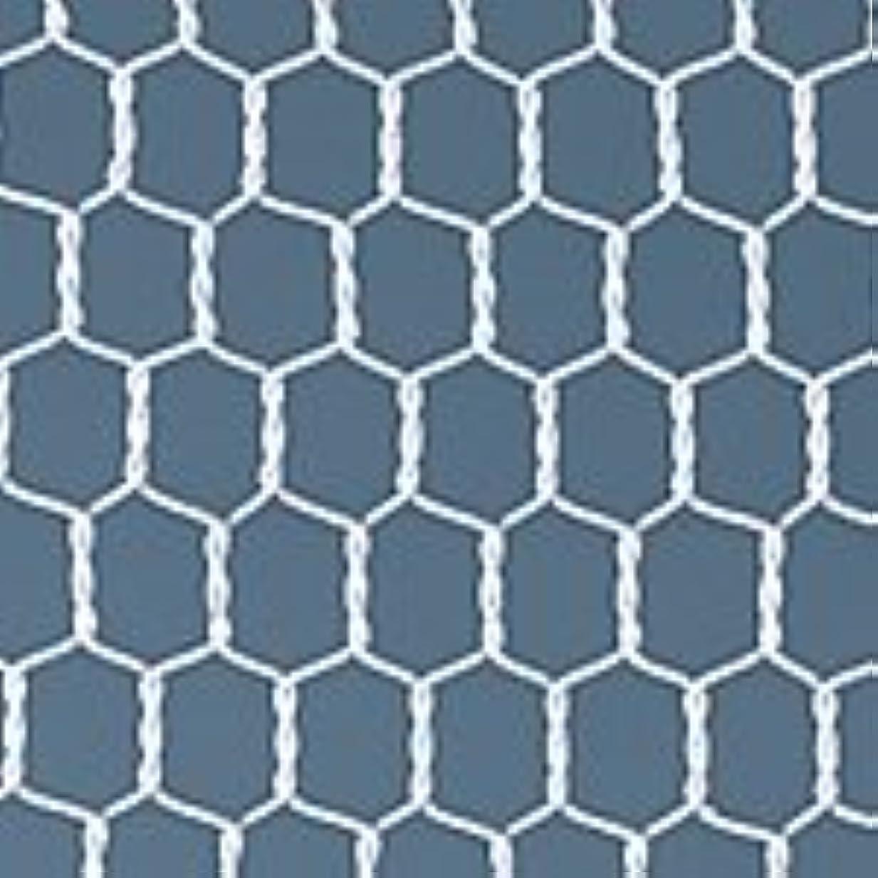 キリマンジャロ時代遅れキャンドルビニール亀甲金網 ホワイト 04)#20 幅(mm):455|長さ(m):30|目開き(mm):10|線径(mm):0.85