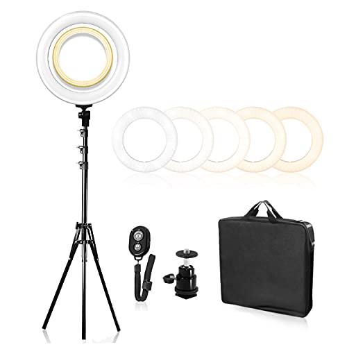 LimoStudio 240LED 18' Dimmable Ring Light Lighting Kit...