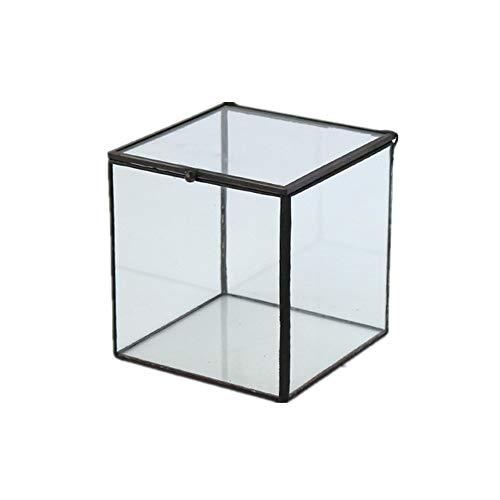 Humeng Décoration Cube Terrarium Qualité Verre Géométrique et Soleil Pot De Fleurs Artistique Vase pour Cactus Mousse Plantes Grasses Plantes Boîtes Artisanat