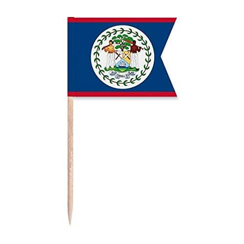 Beauty Gift Belize Flagge Land Nordamerika Markierung für die Kennzeichnung von Zahnstocher-Flaggen