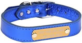 Best dog collar with metal nameplate Reviews
