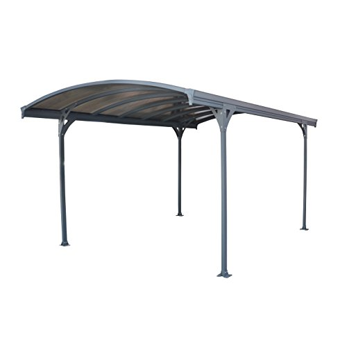 Mejor Palram Arizona Wave HG9103 Double Carport, 19 x 16 x 9, Gray/Gray crítica 2020