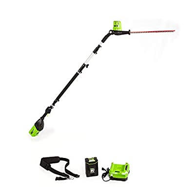 Greenworks PH80B210 20-Inch 80V Cordless Pole Hedge Trimmer, 20 inches