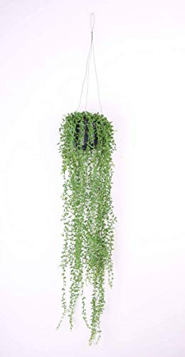 artplants.de Künstliche Blumenampel Cosima, Senecio, im Topf, grün, 70cm - Deko Hängepflanze - KunstPflanze