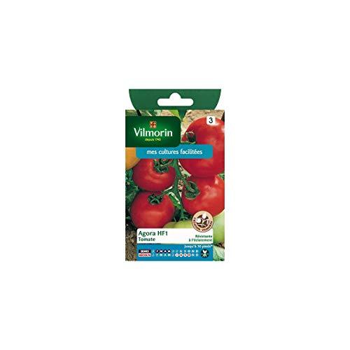 Vilmorin - Sachet graines Tomate Agora HF1