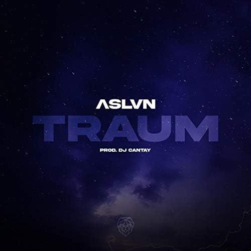 ASLVN