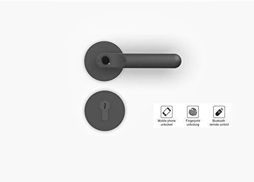 Smart Lock Smart Türgriff Door handle 3 in 1 Fingerscan+APP+Fernbedienung (Schwarz)