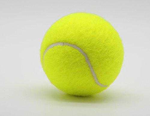 Price - Dose 4er-Pack farbige Tennisbälle (2 x 4 gelbe Tennisbälle)