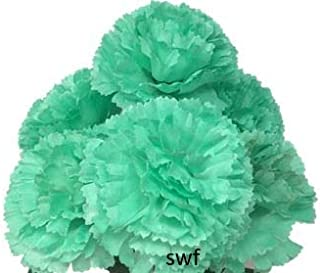 Best mint green carnations Reviews