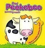 Learning Words (Maxi Peekaboo)