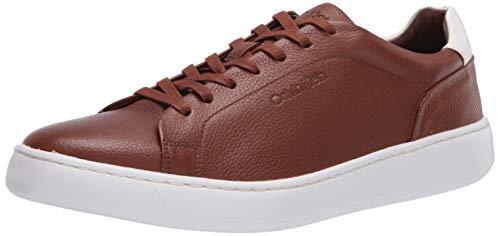 Calvin Klein Men's Falconi Sneaker, Russet