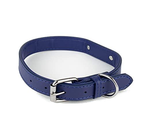 Collare per cani in morbida pelle imbottita con targhetta in metallo e anello a D, collare per cani di taglia piccola, media e grande (S, Blu)