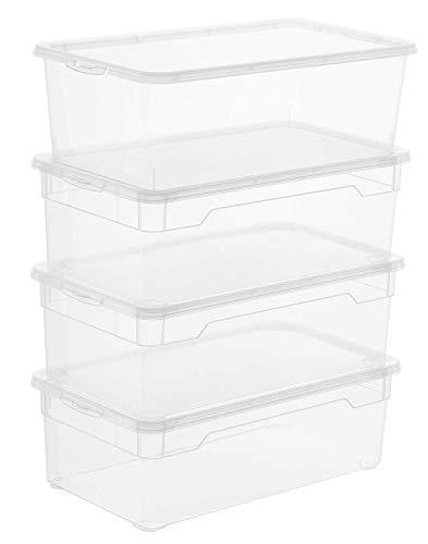 Rotho Clear, Juego de 4 cajas de almacenamiento de 5l con tapa, Plástico PP sin BPA, transparente, 4 x 5l 33.0 x 19.0 x 24.0 cm
