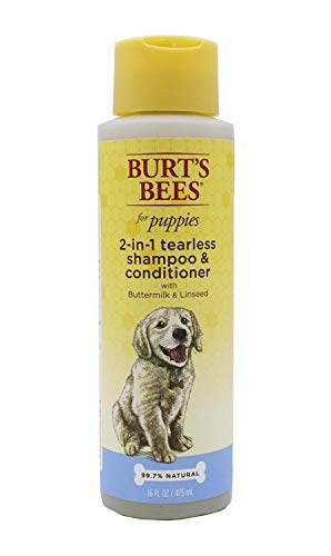 Burt's Bees Dog Shampoo for Pug Puppies, 2 in 1 Shampoo and Conditioner, Buttermilk and Linseed Oil