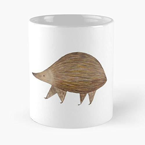 Desconocido Animal Wildlife Africa Cute Animals Rhinoceros Rhinos Rhino Taza de café con Leche 11 oz