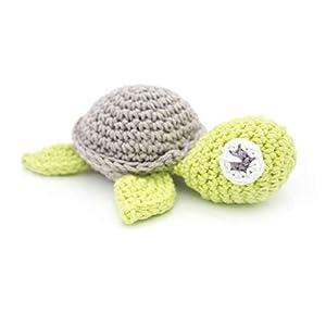 Rassel Schildkröte green nature