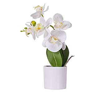 Artificial Orchids Flower with Decorative Vase, Artificial Flower Arrangement, Lifelike Silk Flower,Real Looking Plastic Plants Fake Plants for Home Office Wedding Decoration Party Centerpiece Decor