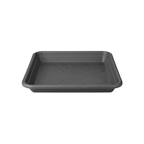 Elho - Sottovaso Quadrato Universale, per Interni ed Esterni, Diametro 30 x Altezza 4,4 cm, plastica, Antracite, 35 cm