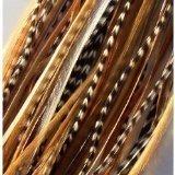 Sexy paillettes 20,3 cm 30,4 cm Longueur de Belle qualité plumes naturelles pour extension de cheveux avec les mélanges de s S Salon 7