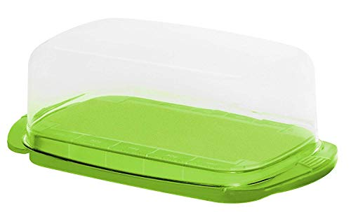 Rotho Fresh Butterdose, Kunststoff (BPA-frei), grün/ transparent, (18 x9,5 x 6,5 cm)