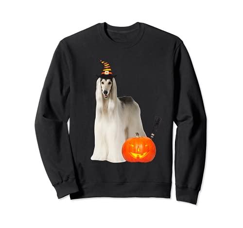Sombrero de bruja de perro afgano disfraz de perro de Halloween Sudadera