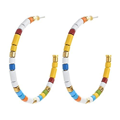 DFGDFG Pendientes Accesorios Gancho de Acero Inoxidable para Mujeres Joyería Círculo Pendientes Drop Color (Metal Color : Rainbow)