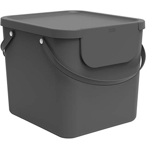 Rotho Albula Afvalscheidingssysteem 40l voor de keuken, Kunststof (PP) BPA-vrij, antraciet, 40l (40.0 x 35.8 x 34.0 cm)