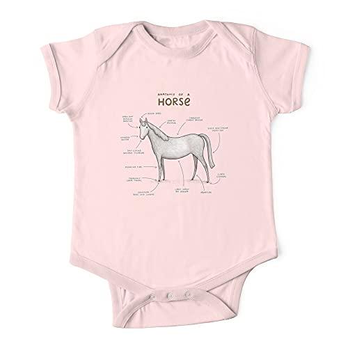 Anatomía de un caballo bebé de una pieza Body bebé bebé mono