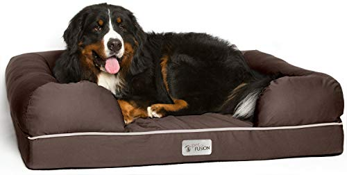 "PetFusion Extra Large Dog Bed w/ Solid 4"" Memory Foam, Waterproof liner, & YKK premium zippers. [Brown, 44x34x10"" ), X-Large (44x34""), Chocolate Brown"